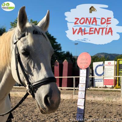 ZONA VALENTIA